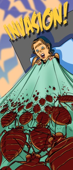 Bed Bugs Attack!